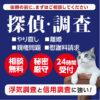 東京都港区の探偵、浮気調査|探偵調査なら飯倉探偵事務所